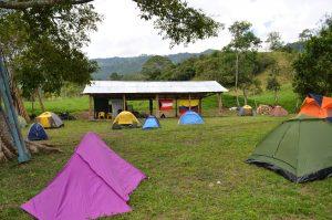 Campo Natauta
