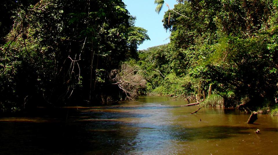 Parque Natural Río Puré