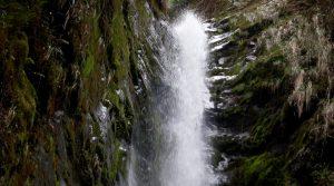 Parque Nacional Natural Tatamá