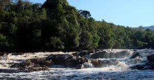 Reserva Nacional Natural Puinawai