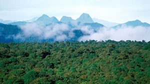 Reserva Natural La Planada