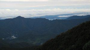 Parque Nacional Natural Munchique