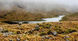Parque Nacional Natural Pisba