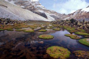 Parque Nacional Natural Chingaza