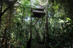Reserva Natural Tanimboca
