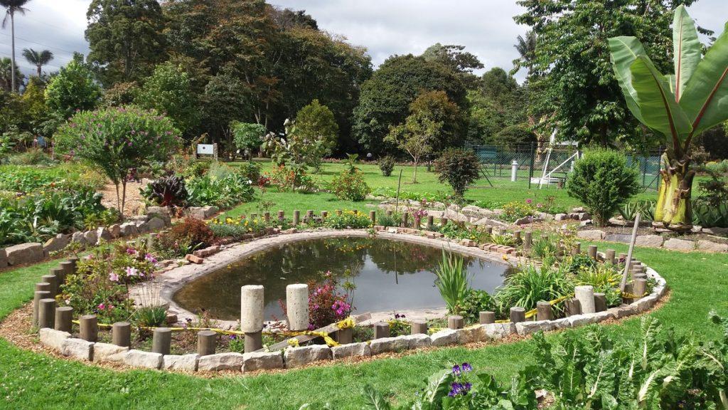 Jardín Botánico de Bogotá: Biodiversidad en la capital ...