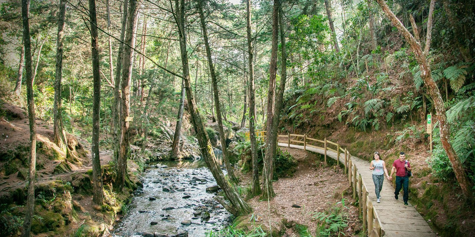 Cascada La Brizuela