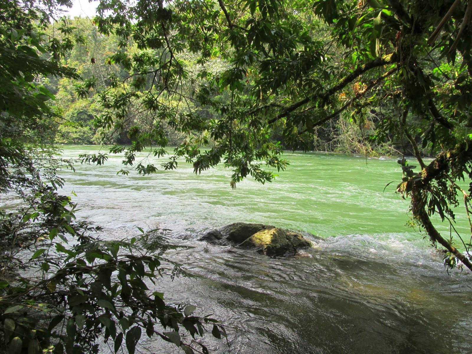 Río La Miel: sites.google.com