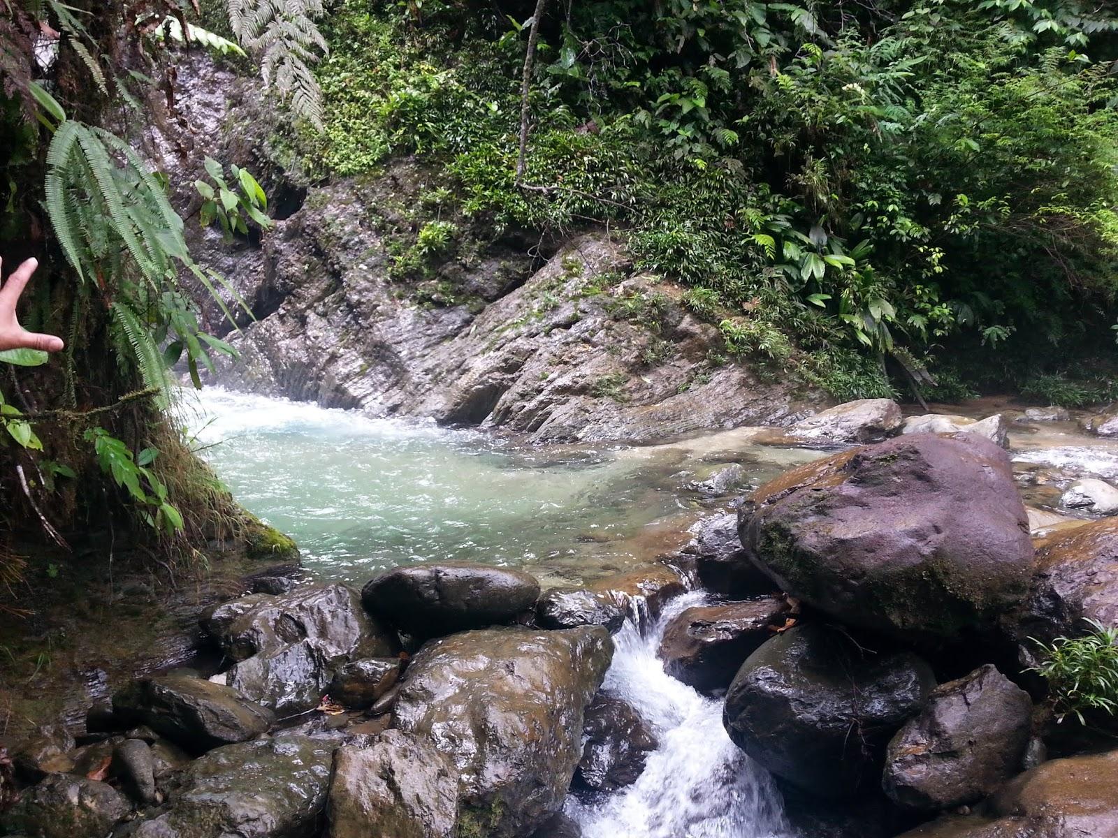 Charco gran piscina de pericos.Foto: linashot.blogspot.com