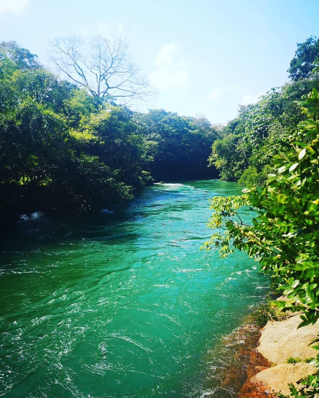 Río La Miel. Foto: grecacaldense