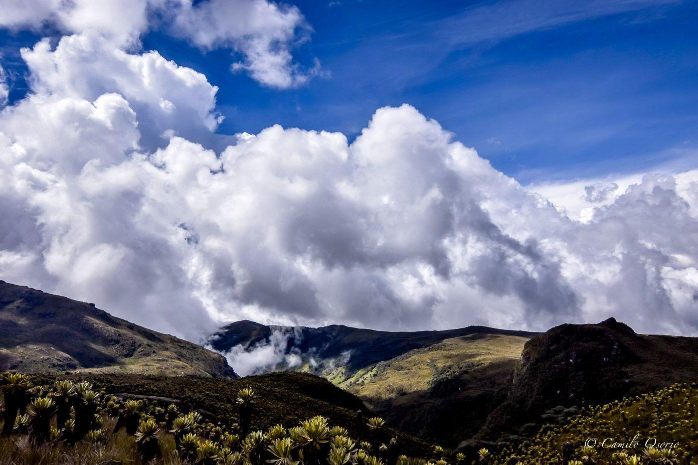 Páramo del Sol. Foto: sendautopica.com