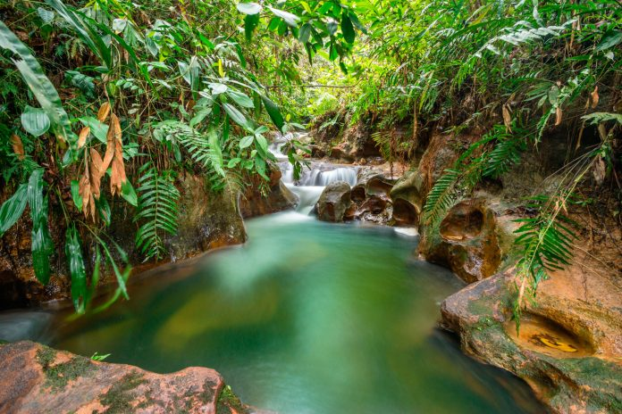 Parque Ecológico el Paraíso de Pedro