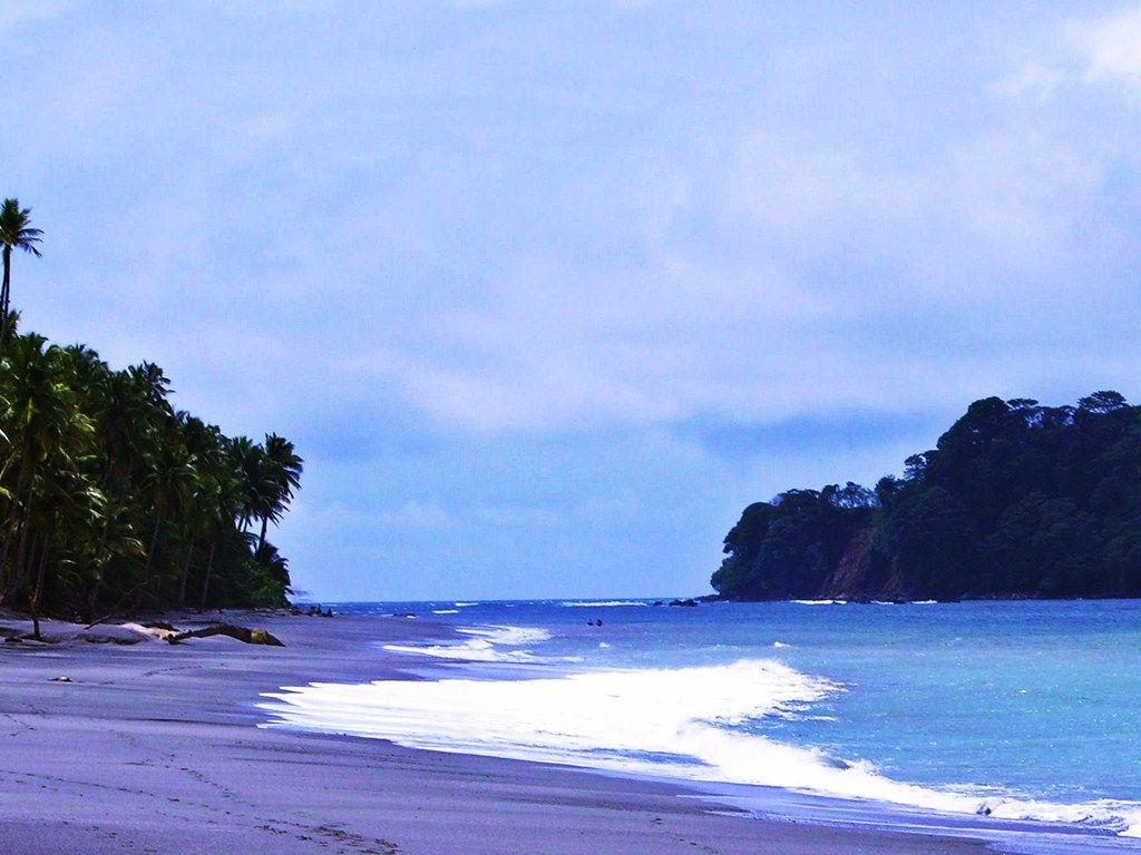 Isla Gorgona. Foto: pinterest.cl