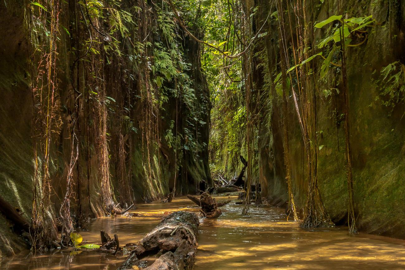 Reserva Natural Las Dalias. Foto: caqueta.travel