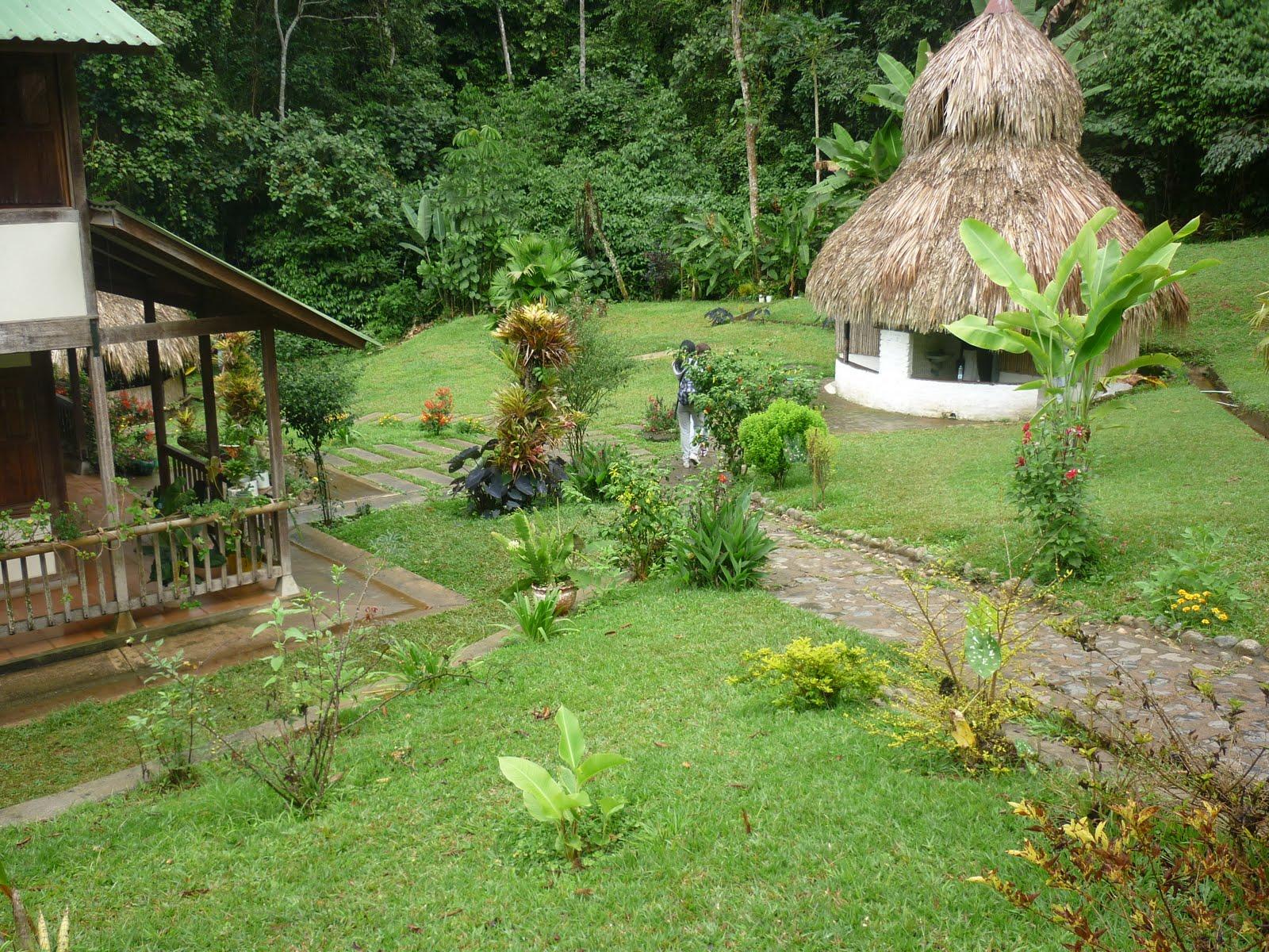 reserva natural bosque de yotoco
