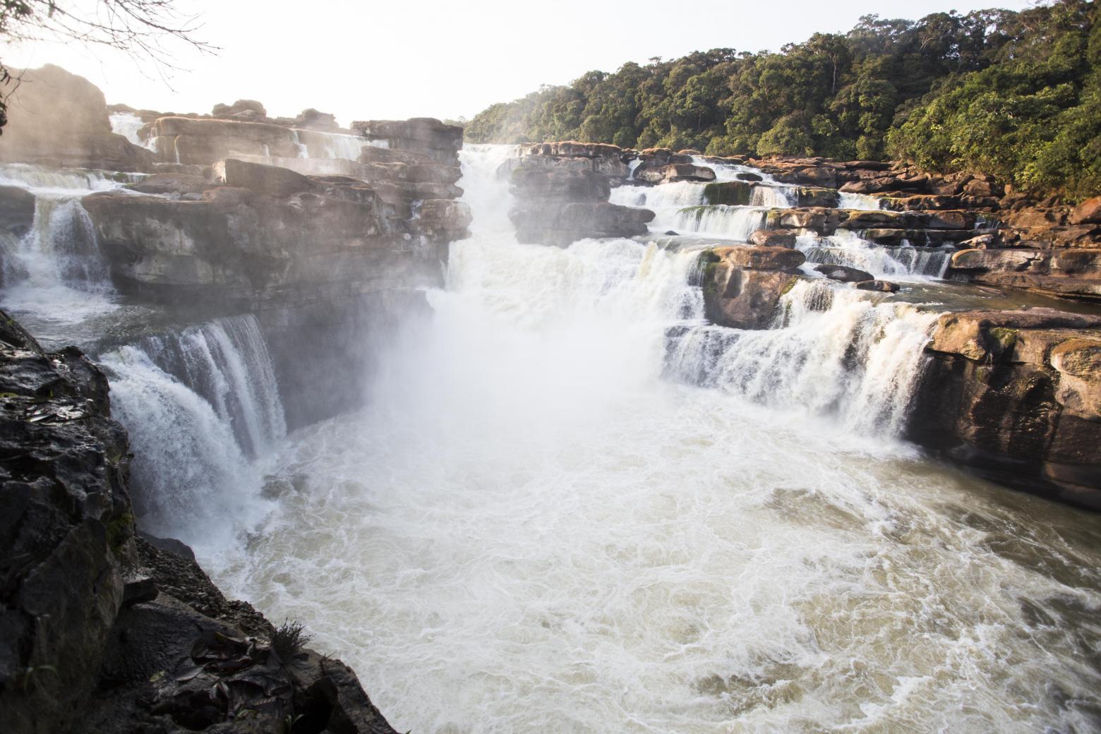 El Parque Nacional Natural Yaigojé Apaporis. Foto: panorama.solutions/
