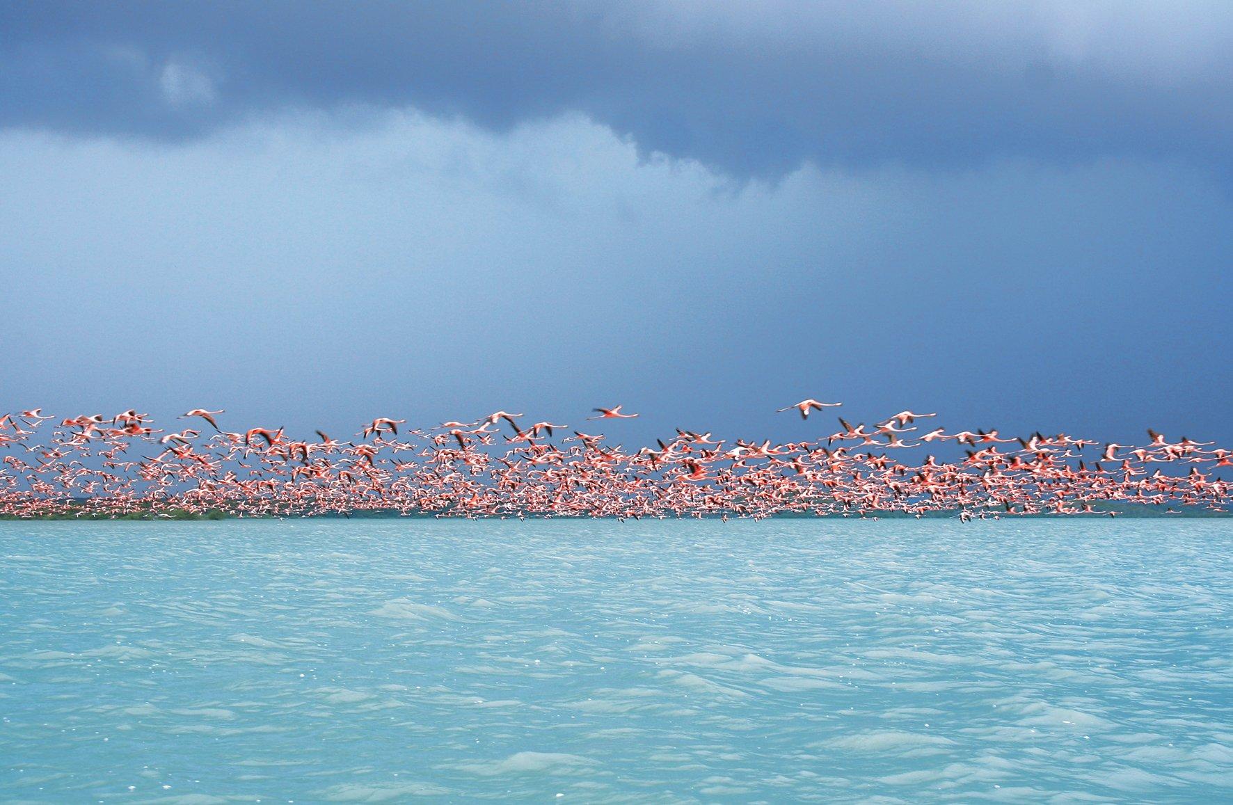 Playa Camarones. Foto: www.guiasybaquianos.com