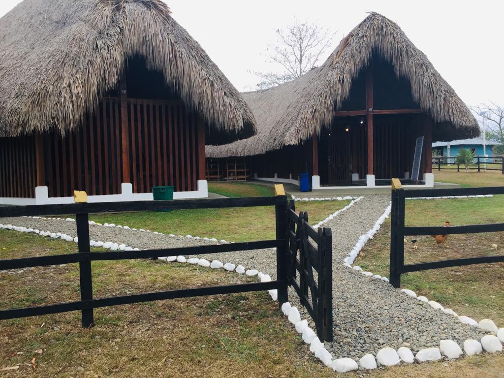 Parques arqueológicos. Foto: www.rcnradio.com