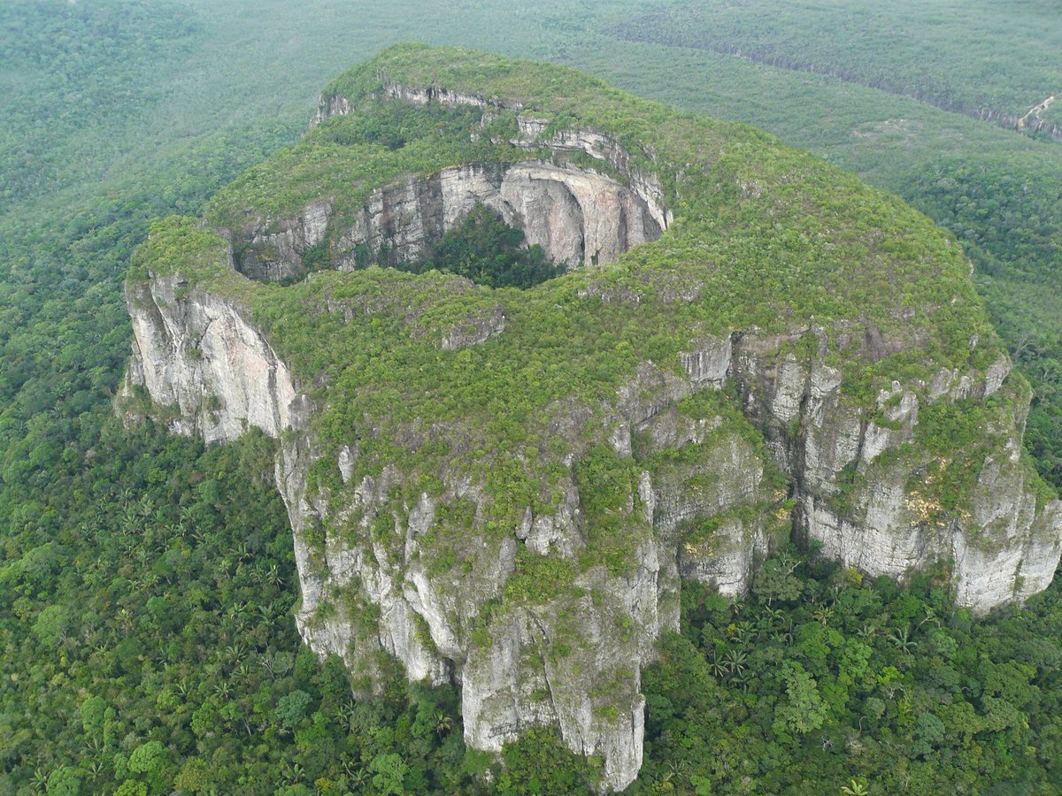 selva colombiana
